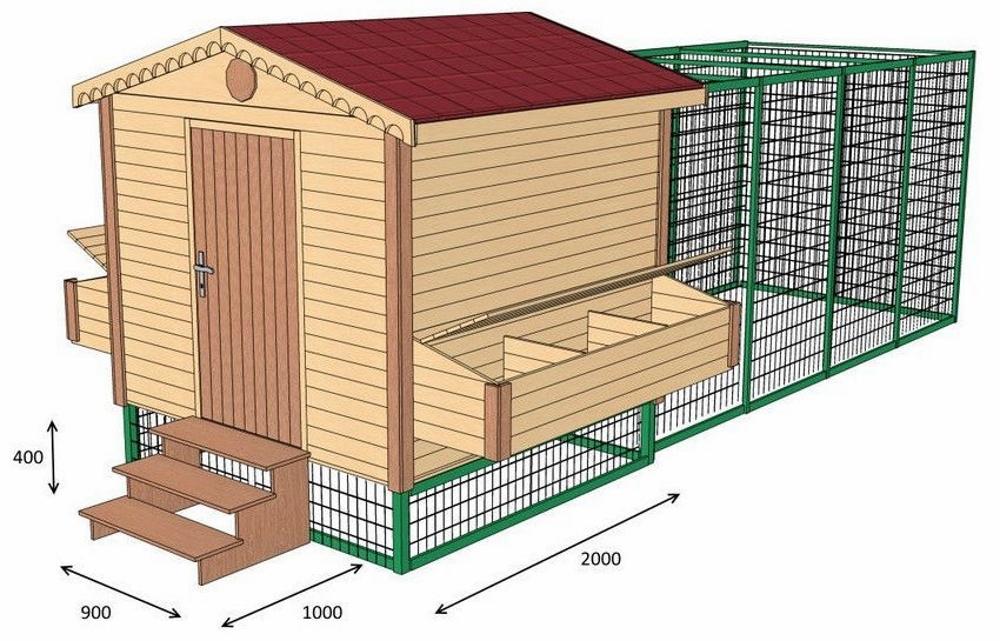 Как построить курятник своими руками на 10-20 кур?