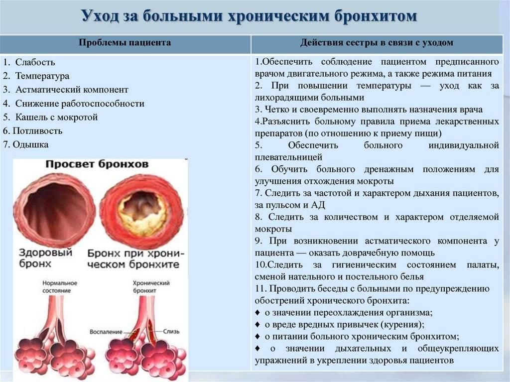 Инфекционный бронхит кур: симптомы, диагностика болезни, лечение, профилактика