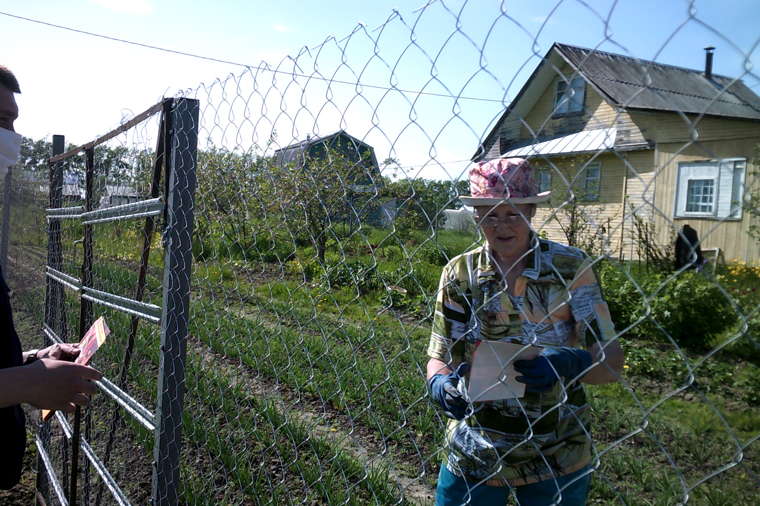 История о том, как мы гусей выращивали, или дачники – неудачники