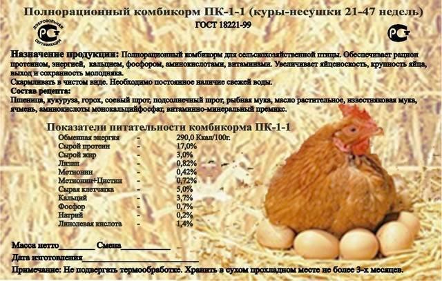 Доступные и полезные корма для кур несушек и бройлеров