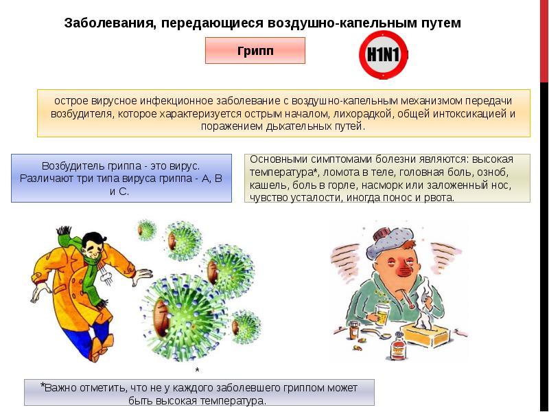 Болезни гусей – симптомы и лечение наиболее распространенных