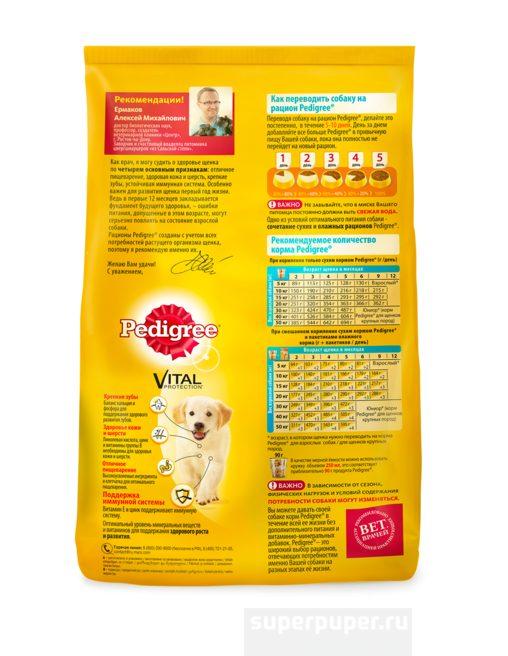 Рекомендации по выбору собачьего корма