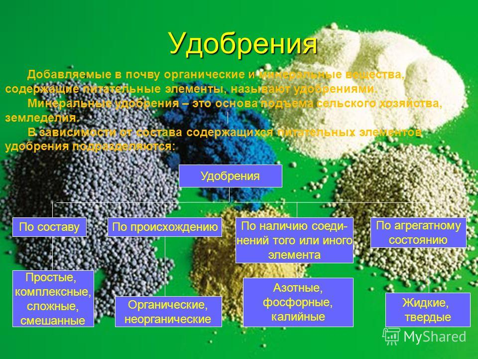 Азотные удобрения и важность азота для растений. Роль азота в жизни растений