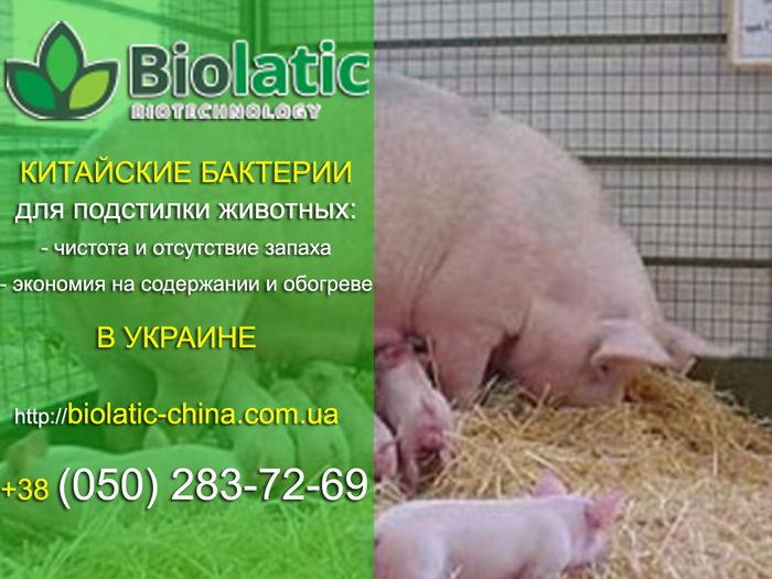 Бактериальная подстилка для кур