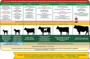 Флавомицин 80 — инструкция по применению в ветеринарии, дозировки птицам и животным