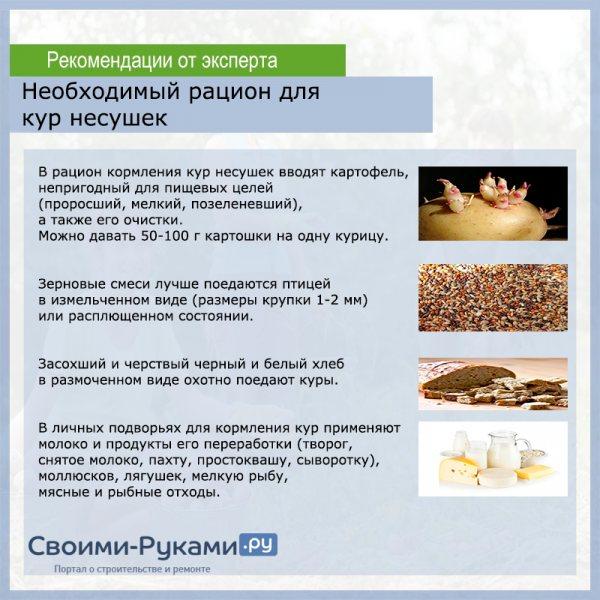 В рационе кормления несушек должны быть: натрий, калий, хлор, железо, йод, лизин, триптофан, метионин
