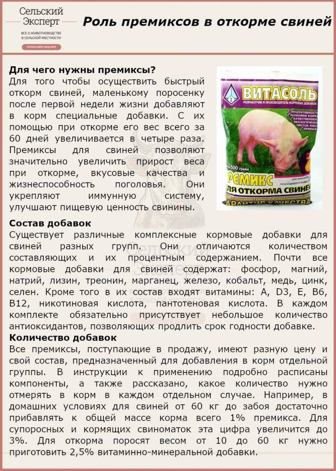 Сода пищевая для кур несушек и цыплят: как давать, дозировка