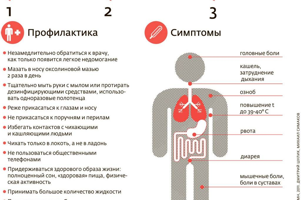 Болезни уток, индоуток, мулардов, симптомы и лечение